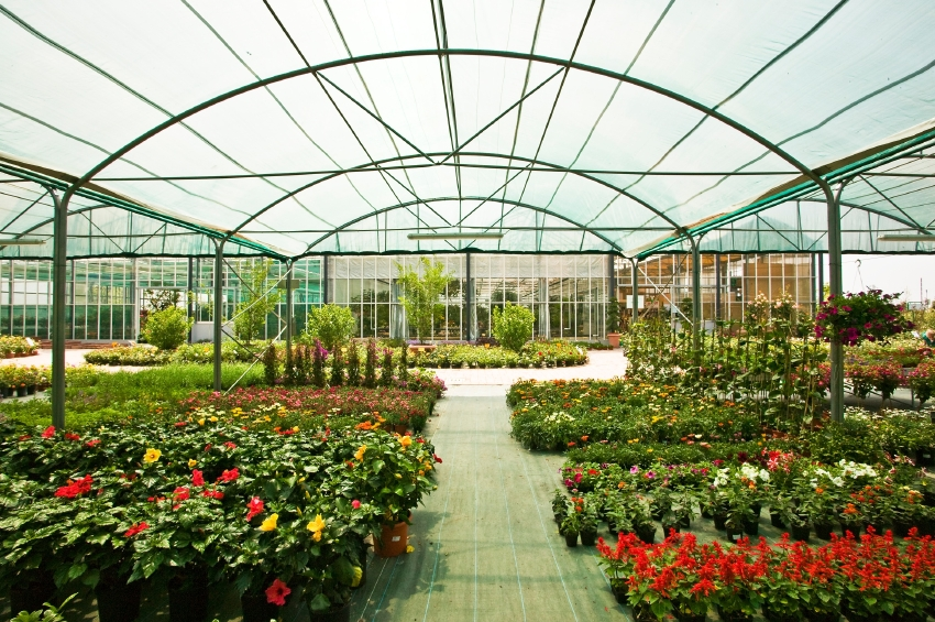 Gardening At Work Tips For Getting Started